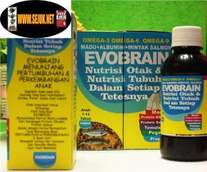 Evobrain