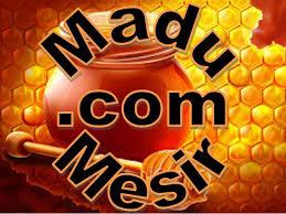 Logo MaduMesir.com